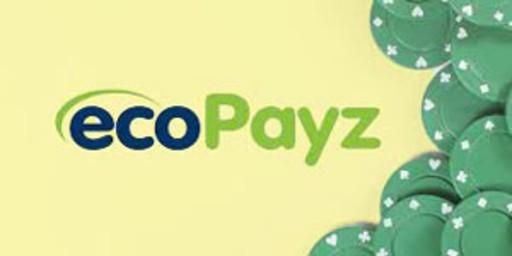 Ecopayz15-min